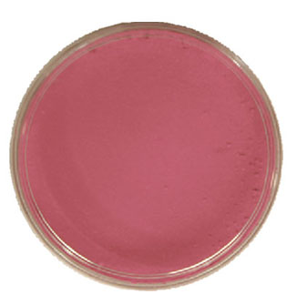 Maquillage KRYOLAN aqua 15 ml rose